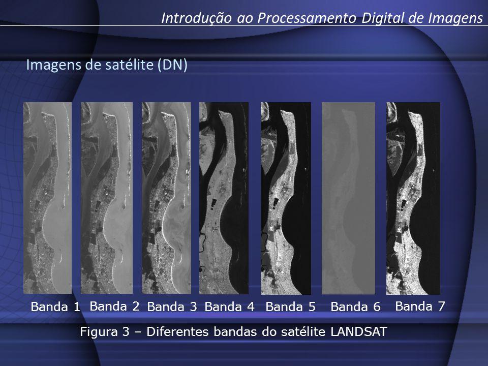 Figura 3 – Diferentes bandas do satélite LANDSAT
