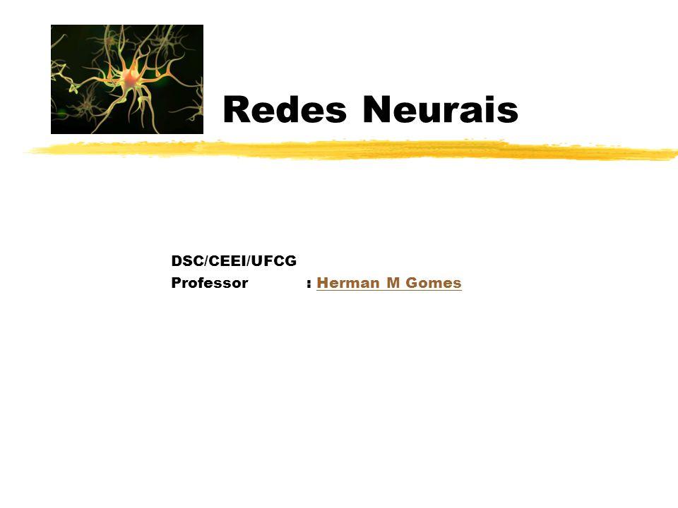 DSC/CEEI/UFCG Professor : Herman M Gomes