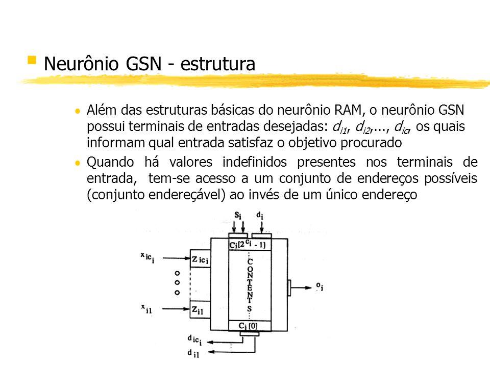 Neurônio GSN - estrutura