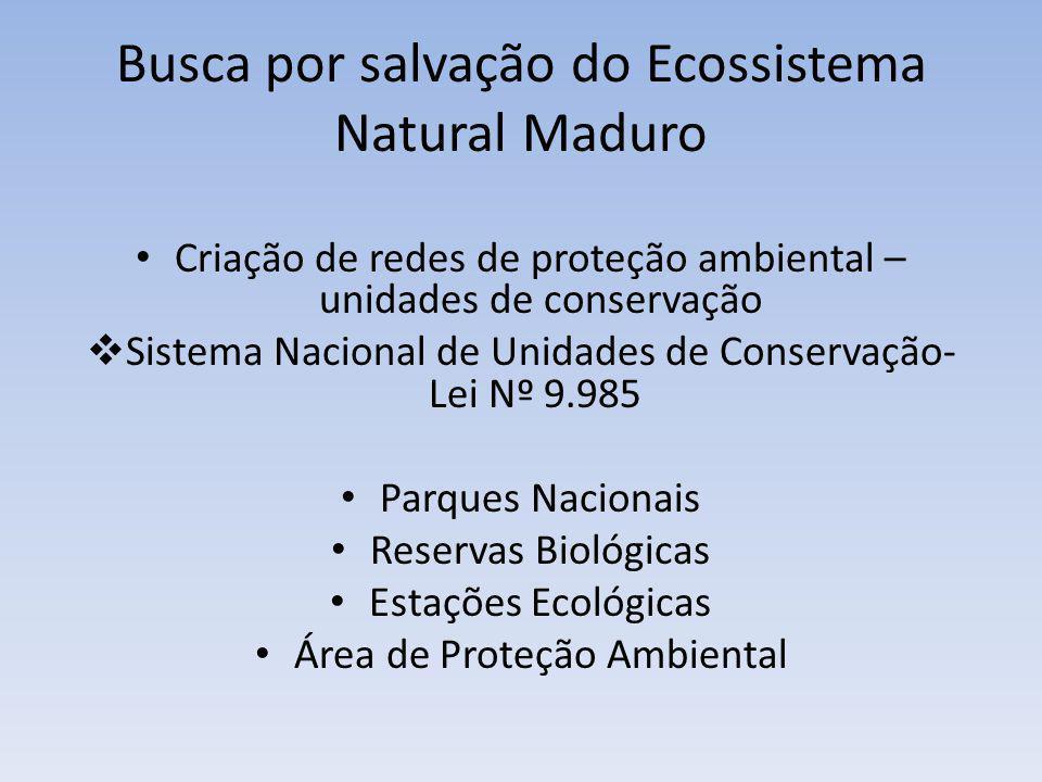 Busca por salvação do Ecossistema Natural Maduro