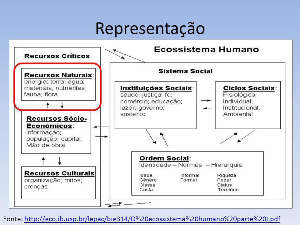 Representação Fonte: http://eco.ib.usp.br/lepac/bie314/O%20ecossistema%20humano%20parte%20I.pdf