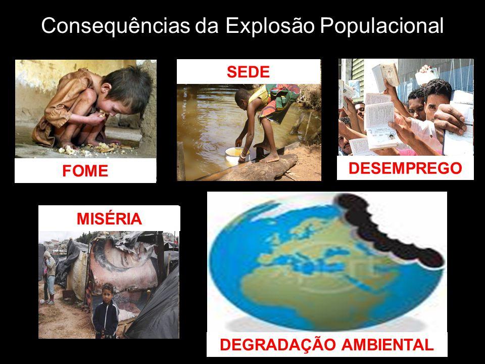 Consequências da Explosão Populacional