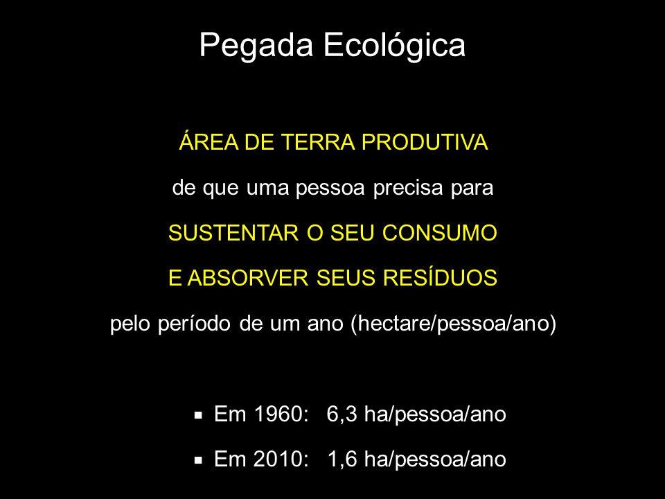 Pegada Ecológica ÁREA DE TERRA PRODUTIVA