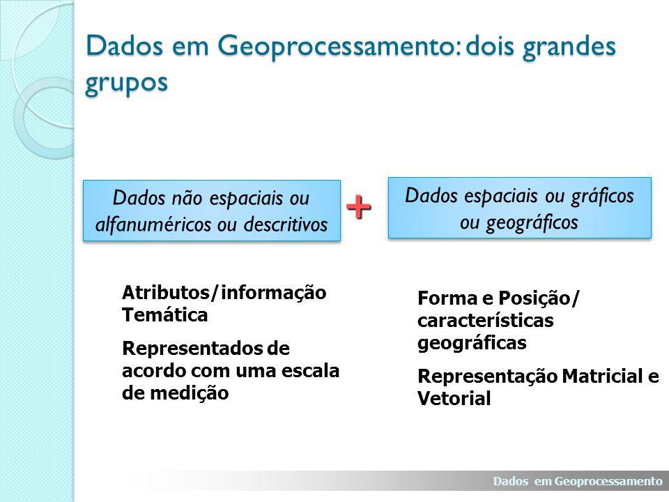 Dados em Geoprocessamento: dois grandes grupos