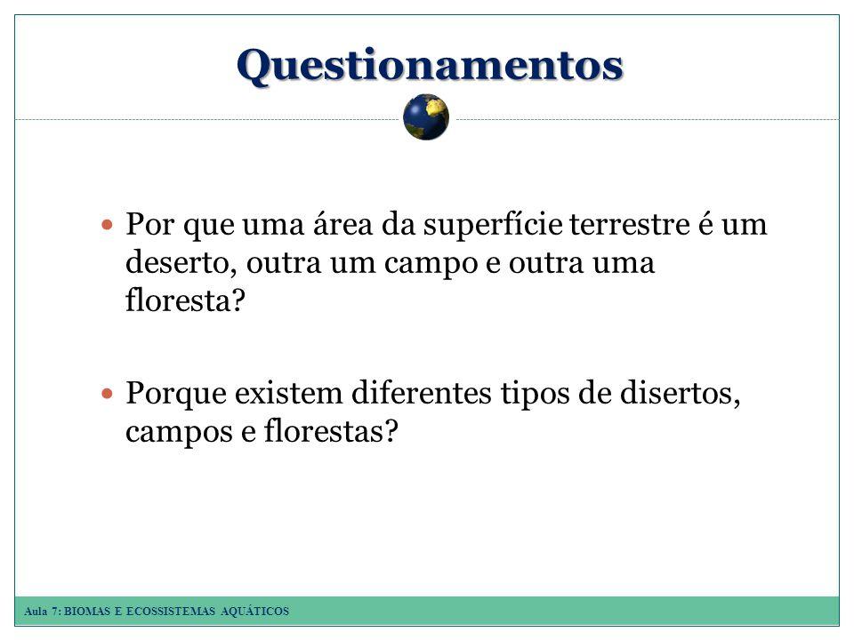Questionamentos Por que uma área da superfície terrestre é um deserto, outra um campo e outra uma floresta