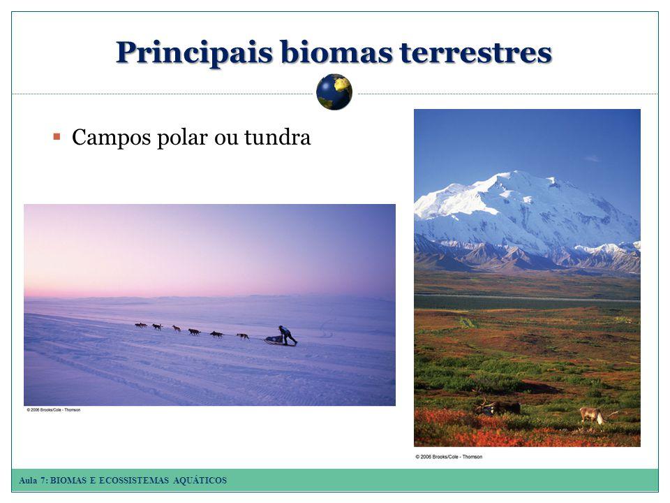 Principais biomas terrestres