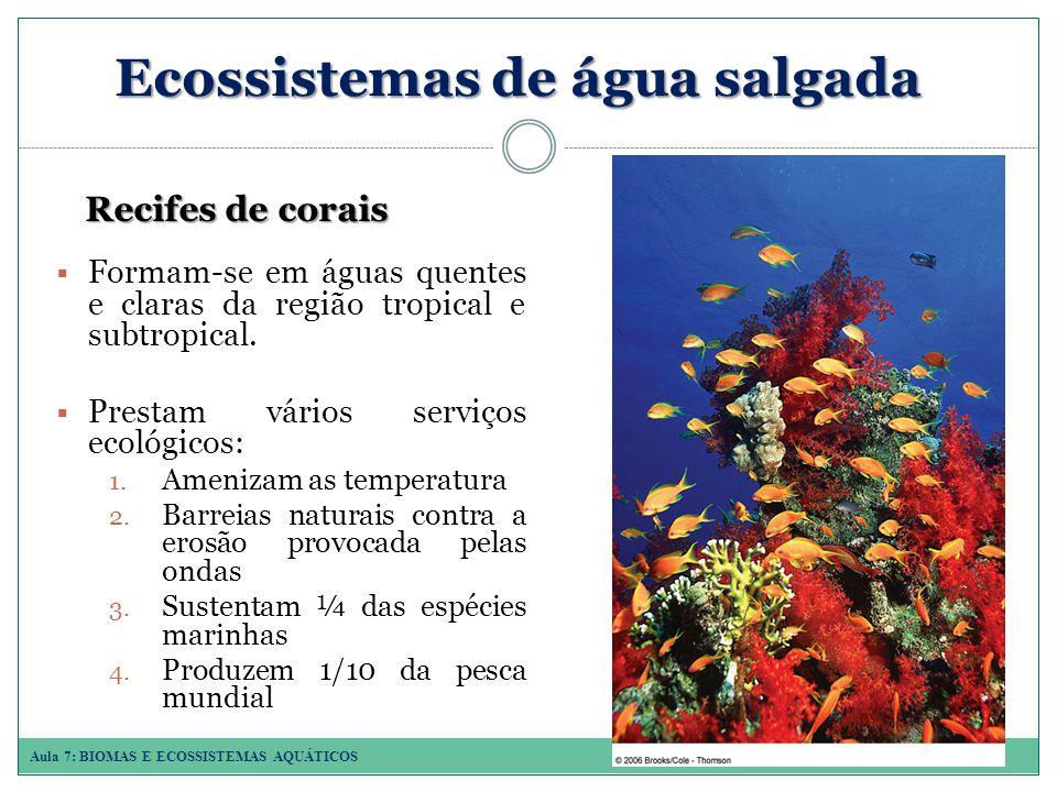 Ecossistemas de água salgada