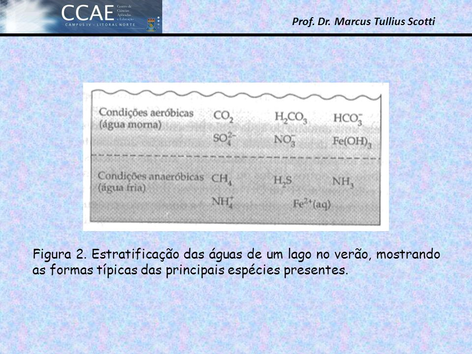 Figura 2.