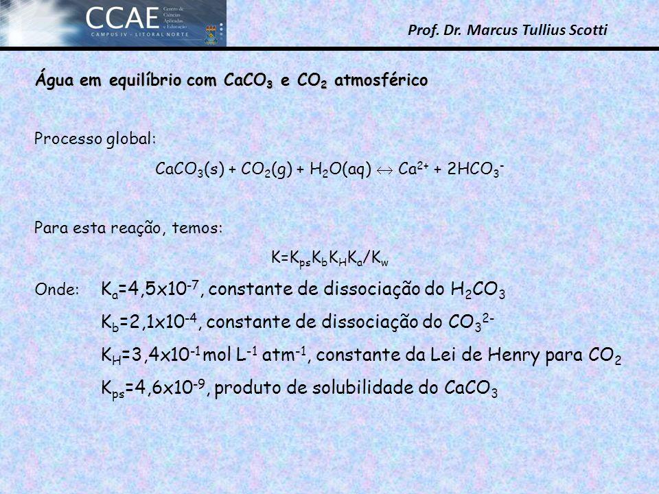 CaCO3(s) + CO2(g) + H2O(aq)  Ca2+ + 2HCO3-