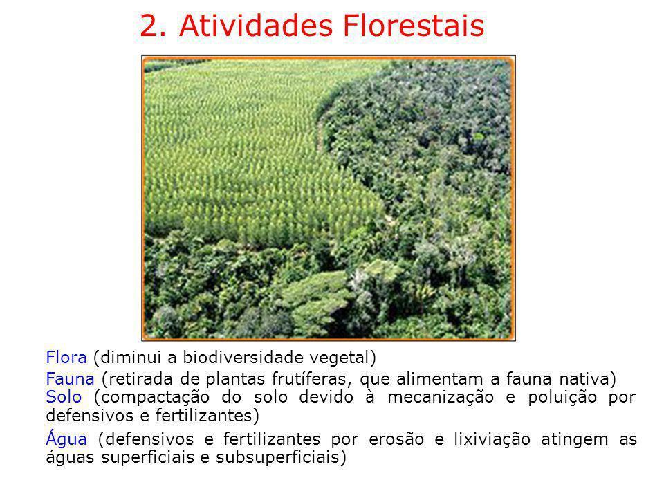 2. Atividades Florestais