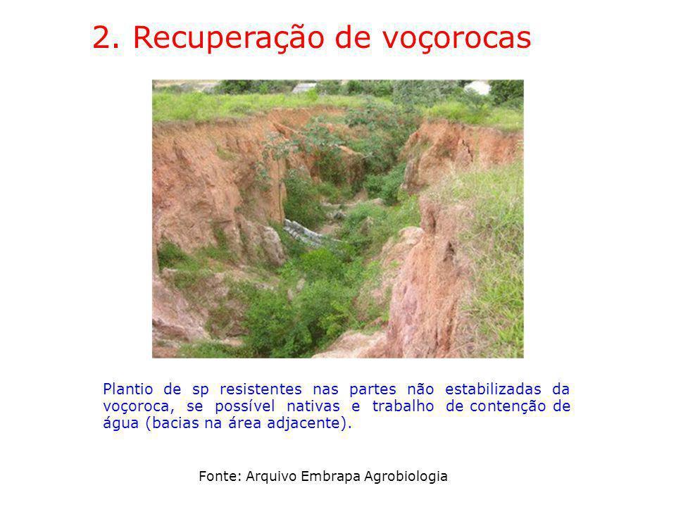 2. Recuperação de voçorocas