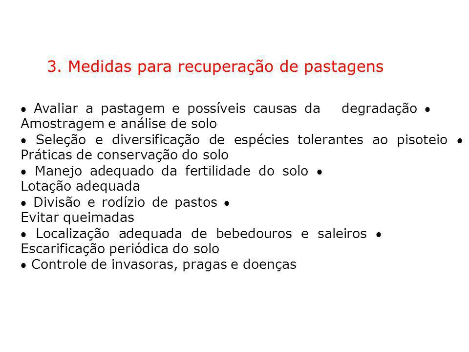 3. Medidas para recuperação de pastagens