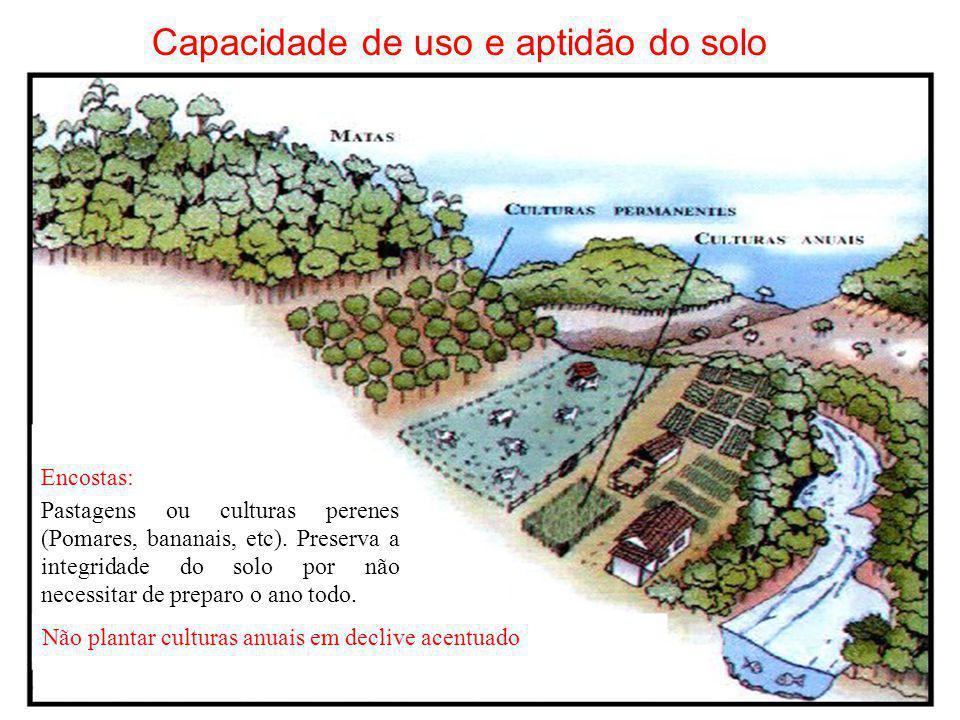 Capacidade de uso e aptidão do solo