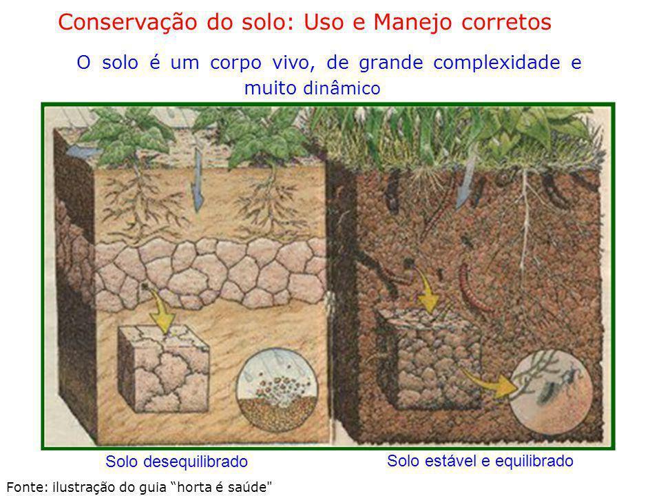 Conservação do solo: Uso e Manejo corretos