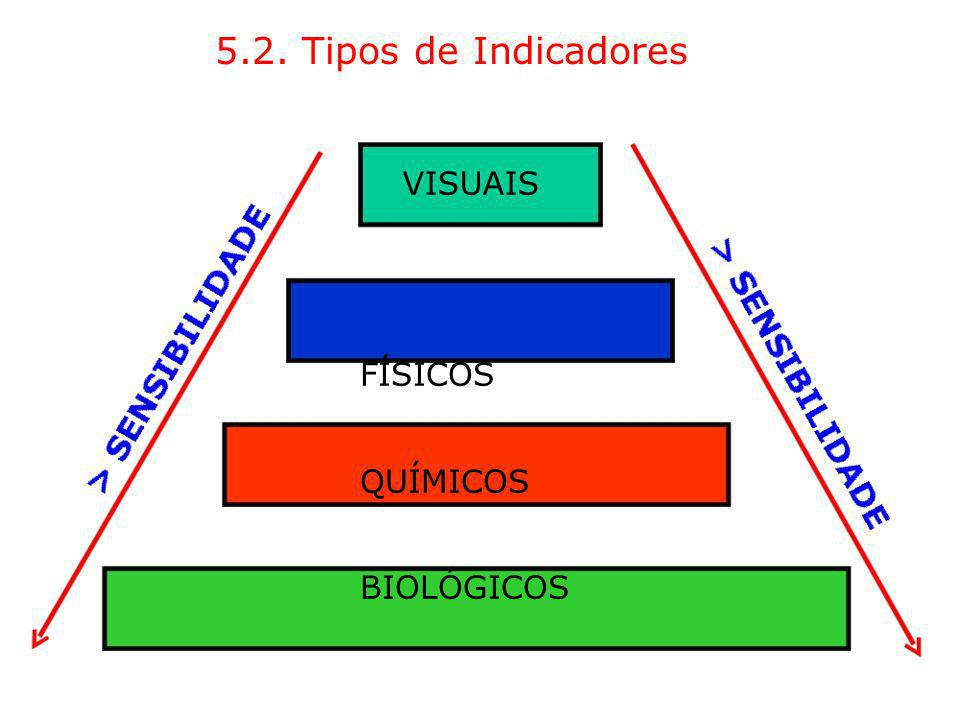 5.2. Tipos de Indicadores VISUAIS FÍSICOS QUÍMICOS BIOLÓGICOS