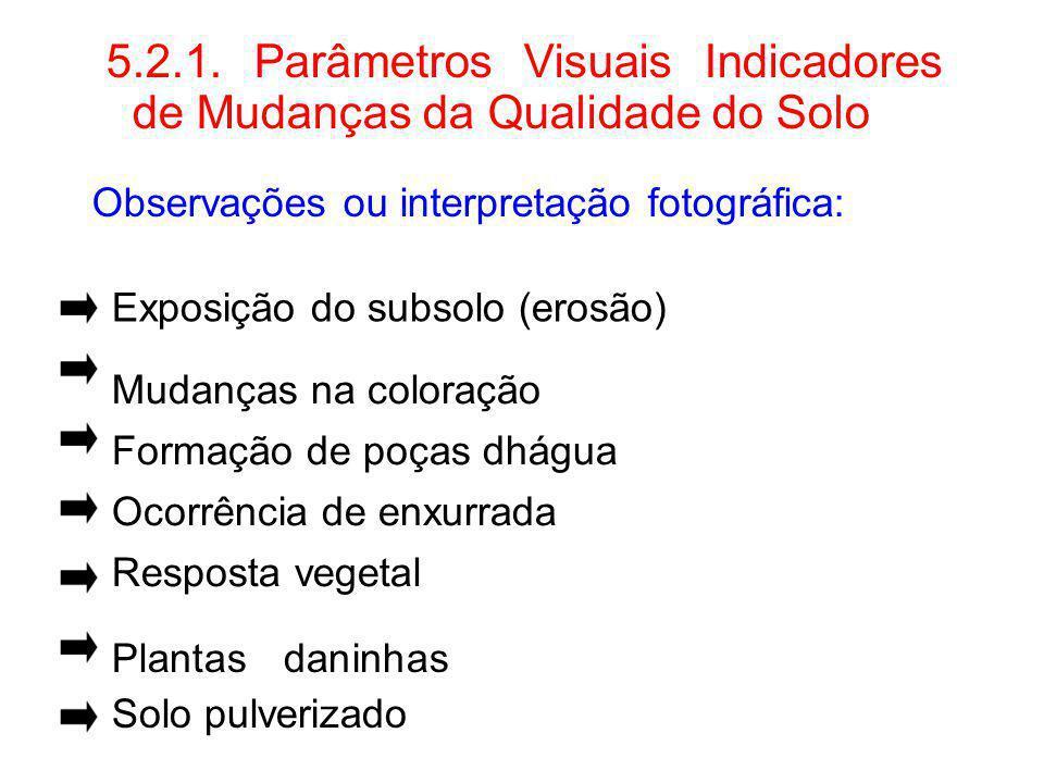 5.2.1. Parâmetros Visuais Indicadores de Mudanças da Qualidade do Solo