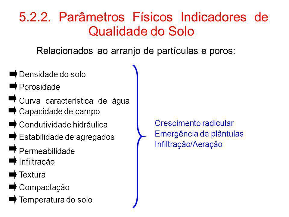 5.2.2. Parâmetros Físicos Indicadores de Qualidade do Solo