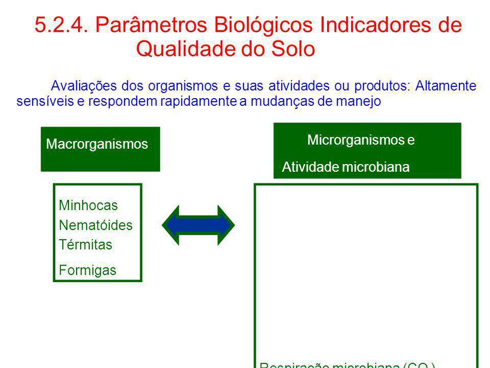 5.2.4. Parâmetros Biológicos Indicadores de Qualidade do Solo