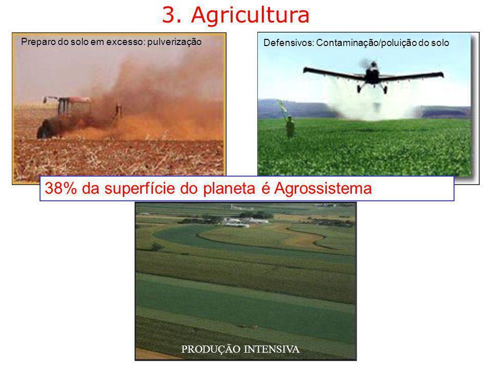 3. Agricultura 38% da superfície do planeta é Agrossistema