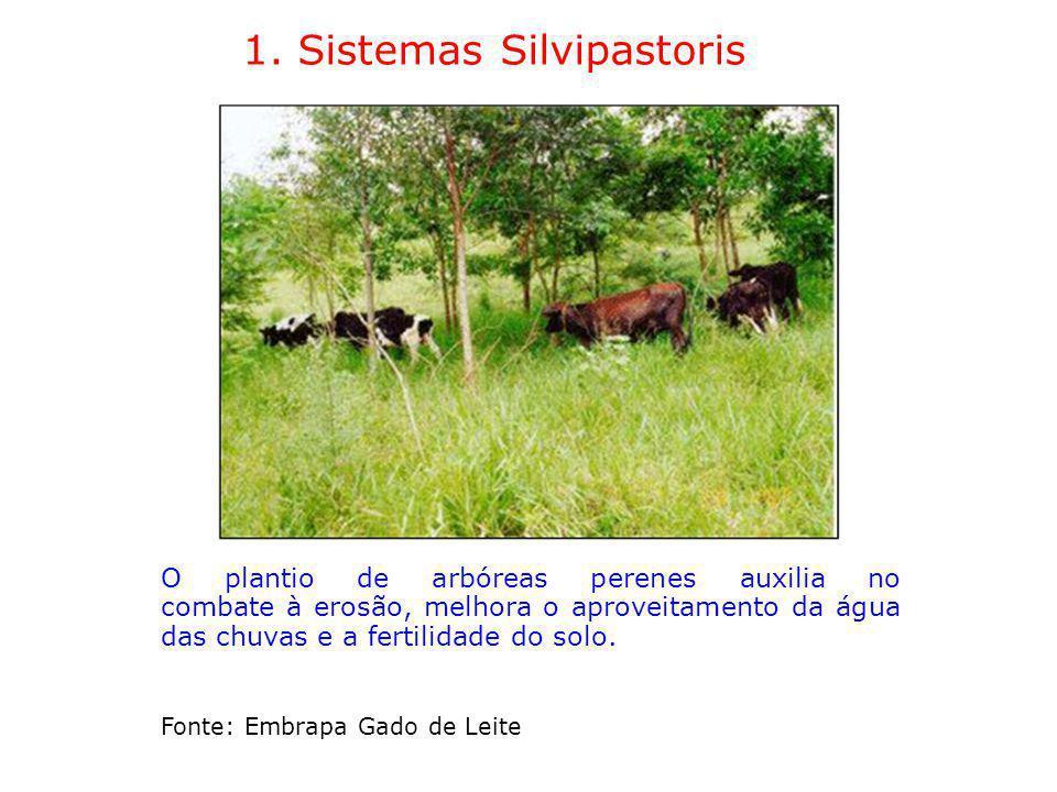 1. Sistemas Silvipastoris