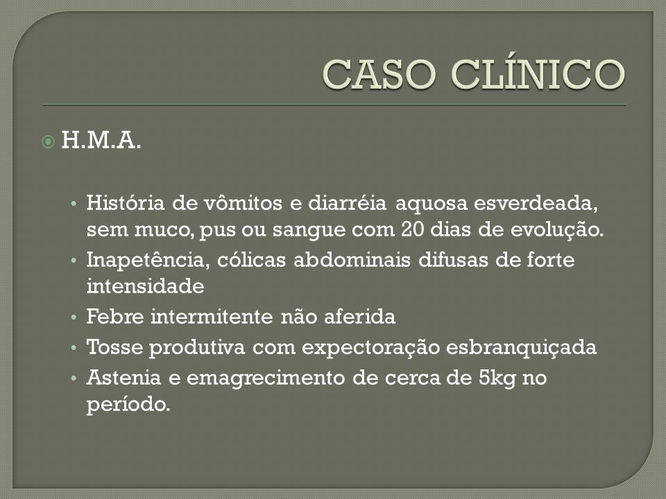 CASO CLÍNICO H.M.A. História de vômitos e diarréia aquosa esverdeada, sem muco, pus ou sangue com 20 dias de evolução.