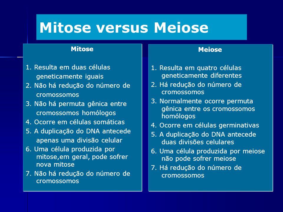 Mitose versus Meiose Mitose Meiose 1. Resulta em duas células