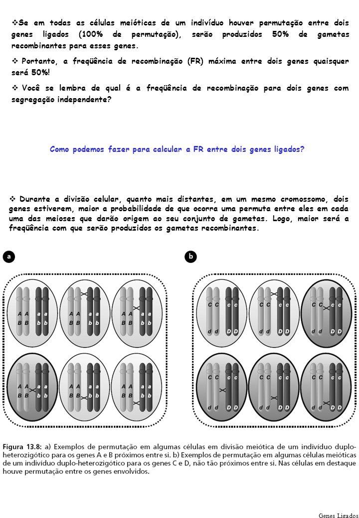 Como podemos fazer para calcular a FR entre dois genes ligados