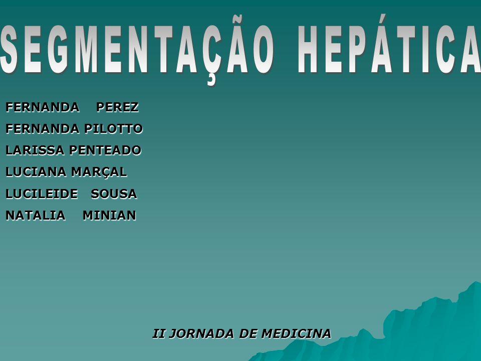 SEGMENTAÇÃO HEPÁTICA FERNANDA PEREZ FERNANDA PILOTTO LARISSA PENTEADO