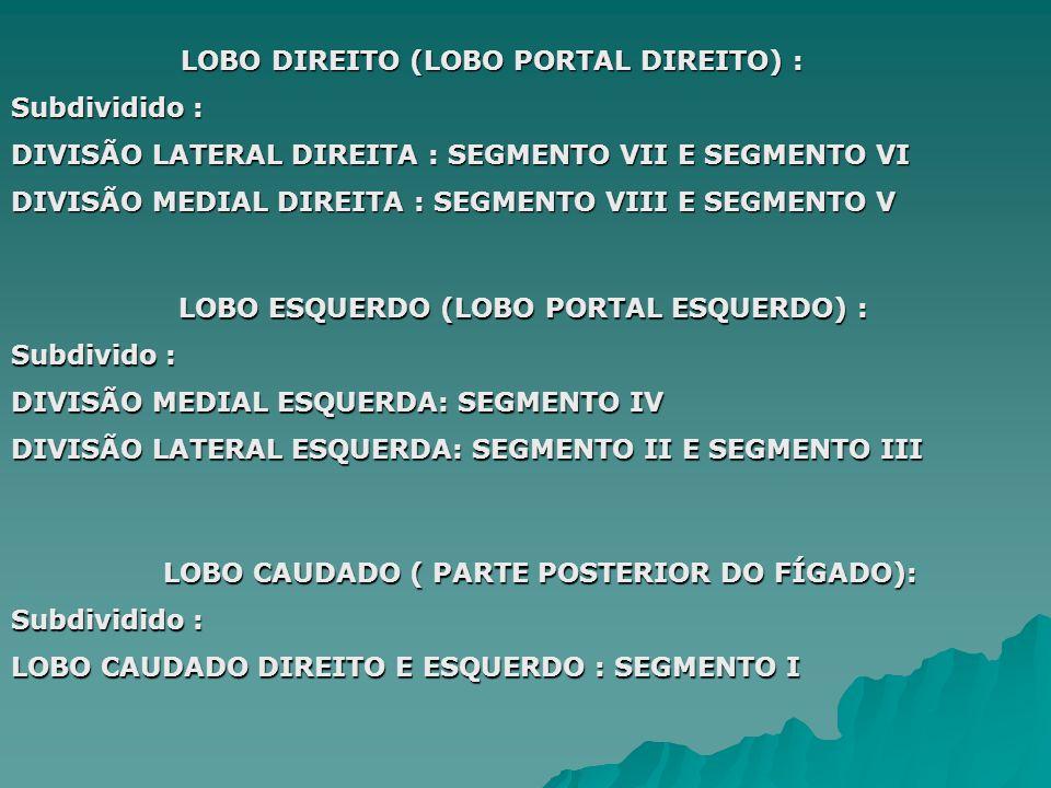 LOBO DIREITO (LOBO PORTAL DIREITO) :