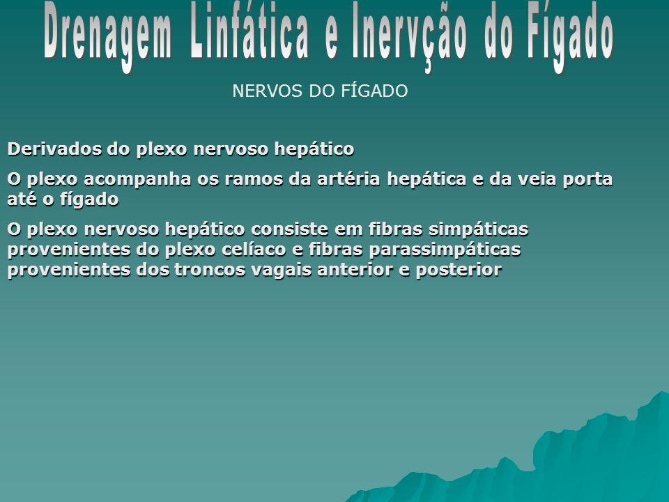 Drenagem Linfática e Inervção do Fígado
