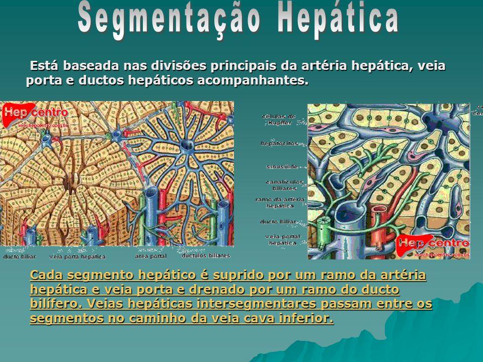 Segmentação Hepática Está baseada nas divisões principais da artéria hepática, veia porta e ductos hepáticos acompanhantes.