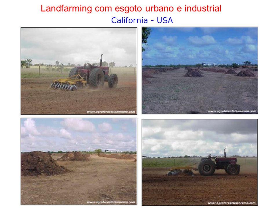 Landfarming com esgoto urbano e industrial