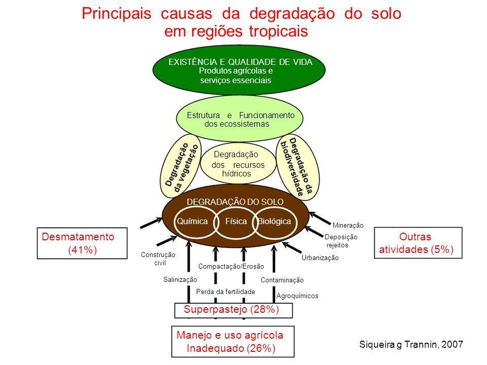 Principais causas da degradação do solo em regiões tropicais