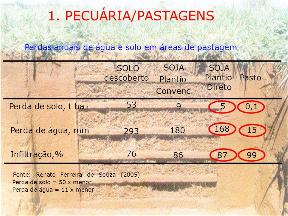 1. PECUÁRIA/PASTAGENS Perdas anuais de água e solo em áreas de pastagem. SOLO. SOJA. SOJA. descoberto.