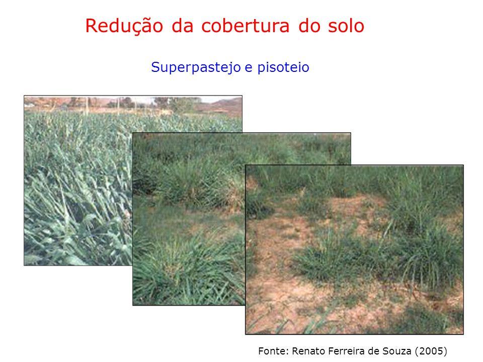 Redução da cobertura do solo
