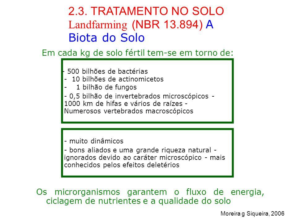 2.3. TRATAMENTO NO SOLO Landfarming (NBR 13.894) A Biota do Solo
