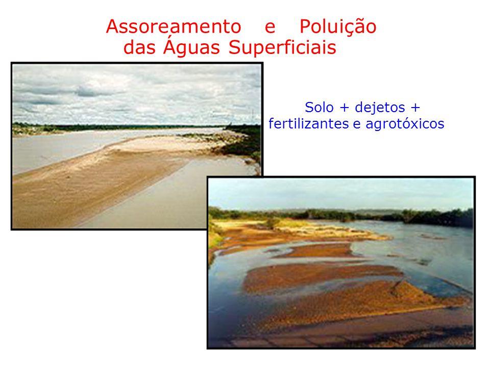 Assoreamento e Poluição das Águas Superficiais