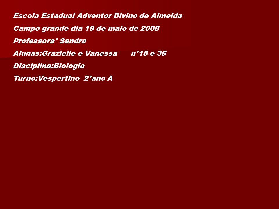 Escola Estadual Adventor Divino de Almeida