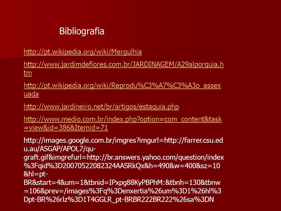 Bibliografia http://pt.wikipedia.org/wiki/Mergulhia