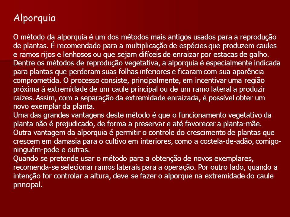 Alporquia