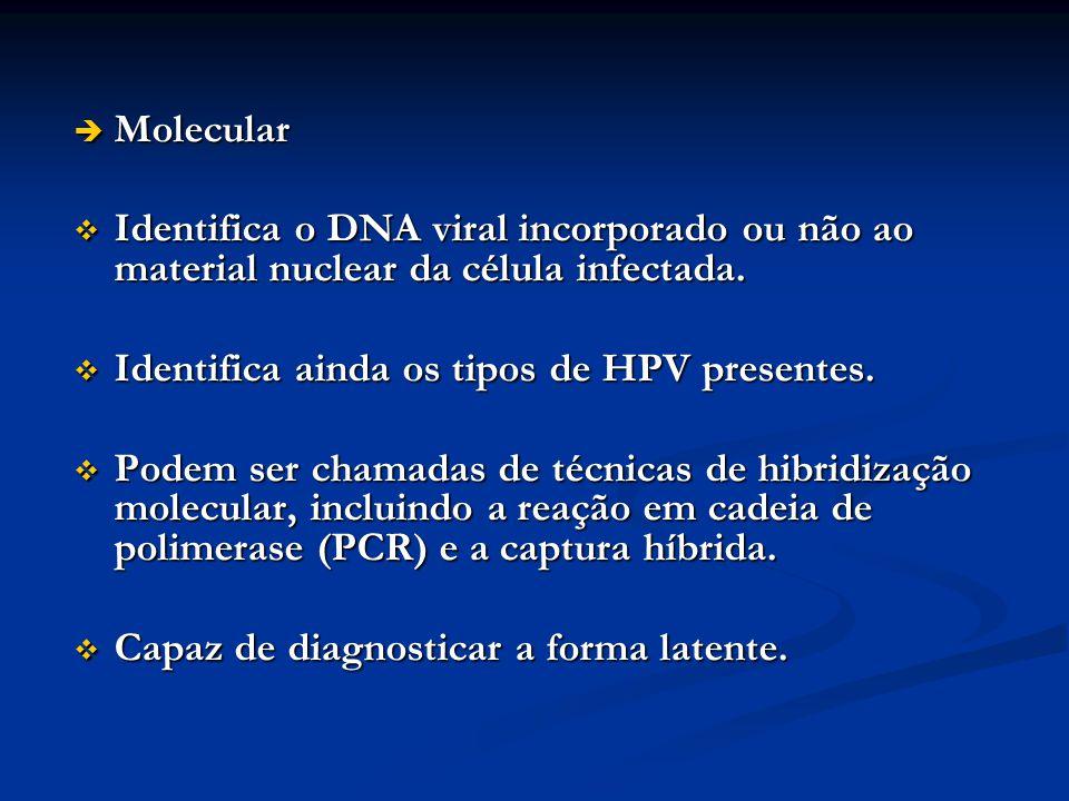 Molecular Identifica o DNA viral incorporado ou não ao material nuclear da célula infectada. Identifica ainda os tipos de HPV presentes.