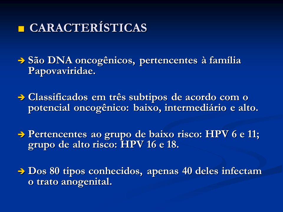 CARACTERÍSTICAS São DNA oncogênicos, pertencentes à família Papovaviridae.