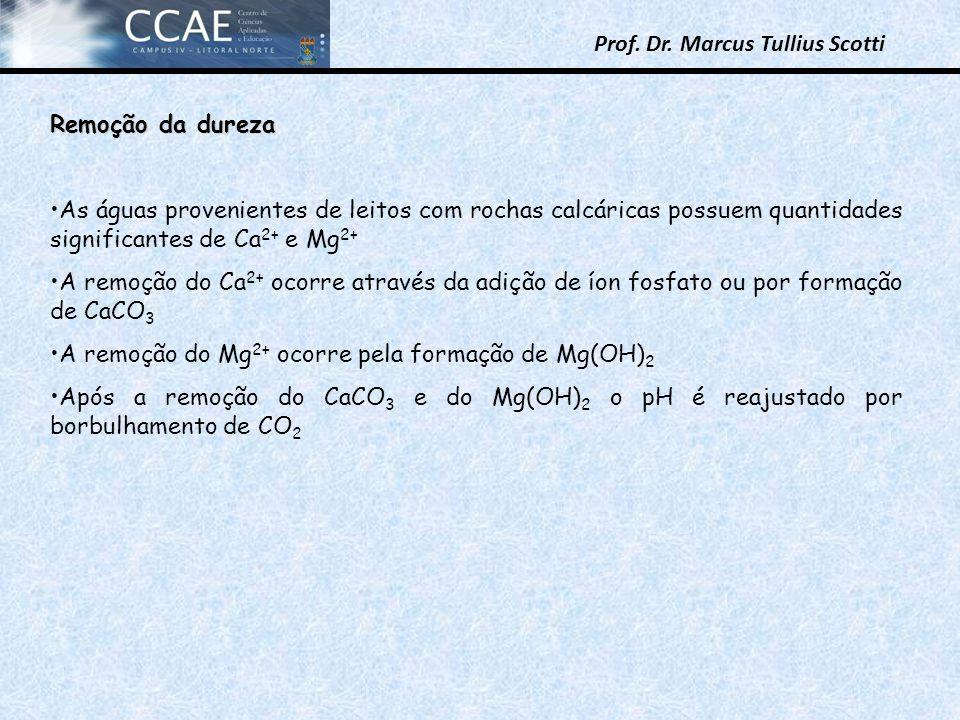 Remoção da dureza As águas provenientes de leitos com rochas calcáricas possuem quantidades significantes de Ca2+ e Mg2+