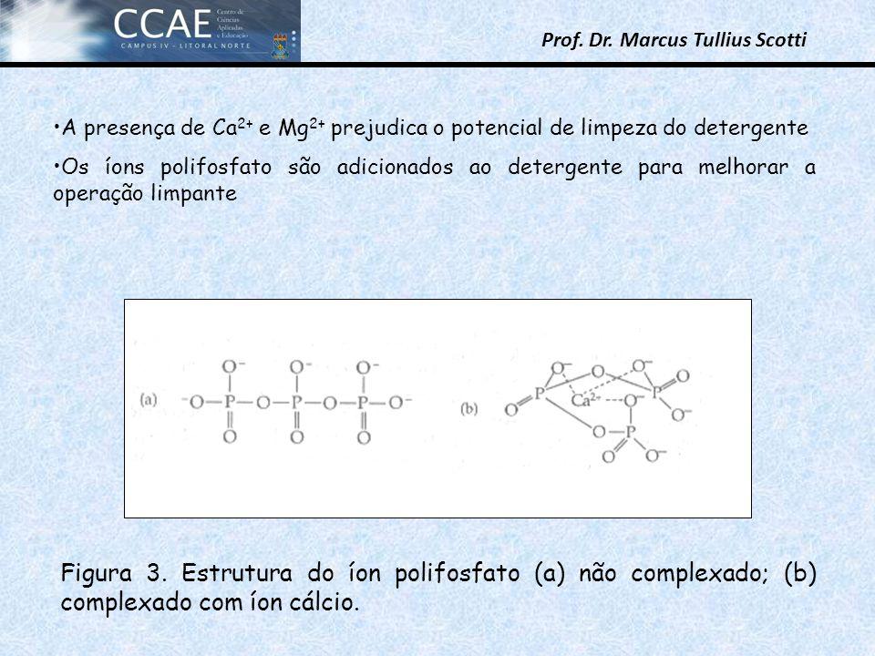 A presença de Ca2+ e Mg2+ prejudica o potencial de limpeza do detergente