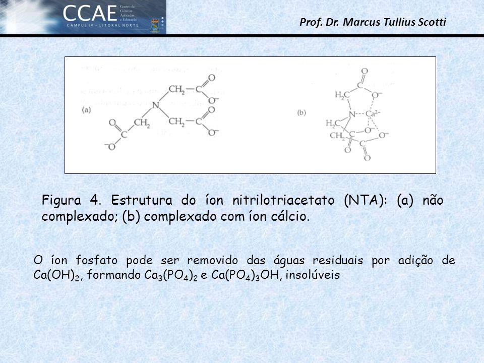Figura 4. Estrutura do íon nitrilotriacetato (NTA): (a) não complexado; (b) complexado com íon cálcio.