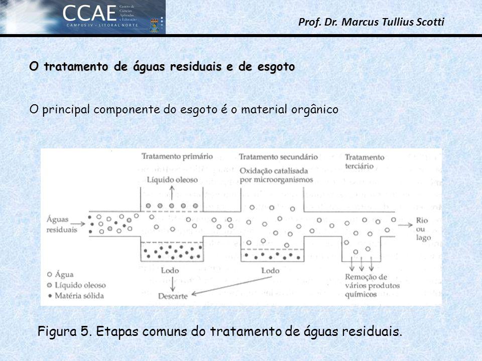 Figura 5. Etapas comuns do tratamento de águas residuais.