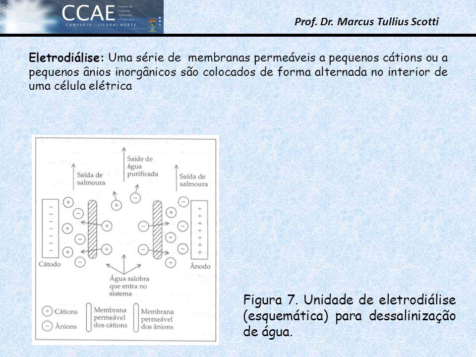 Eletrodiálise: Uma série de membranas permeáveis a pequenos cátions ou a pequenos ânios inorgânicos são colocados de forma alternada no interior de uma célula elétrica