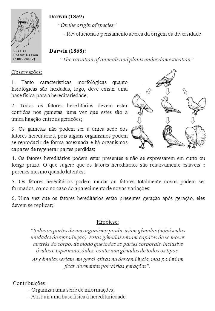 Darwin (1859) On the origin of species Revoluciona o pensamento acerca da origem da diversidade.