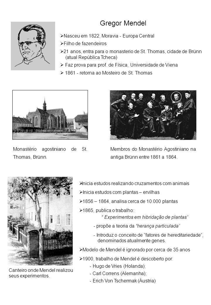 Gregor Mendel Nasceu em 1822, Moravia - Europa Central