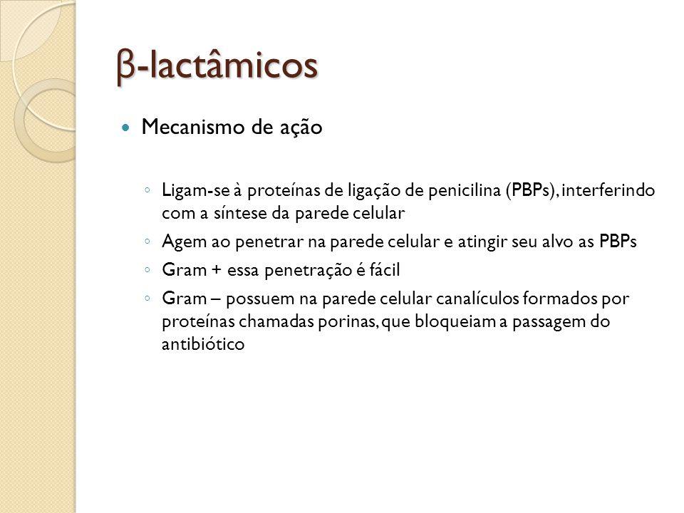 β-lactâmicos Mecanismo de ação